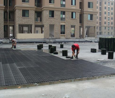 余杭某项目蓄排水板施工案例