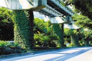 上海市民可预约参观屋顶绿化示范点