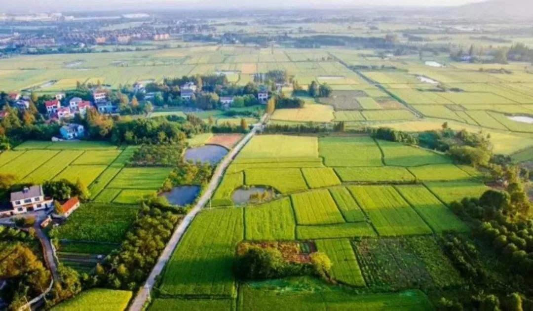 自然资源部:住宅用地消化周期超36个月将停止供地