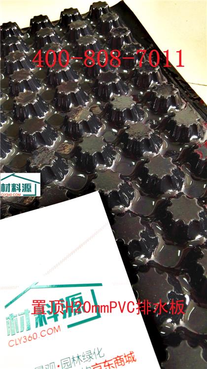H20mm置顶PVC排水板,优质建筑绿化排水板厂家