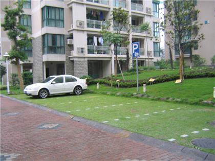 植草格针对不同场地的施工工艺