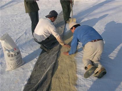 天然钠基膨润土和人工钠基膨润土的鉴别方法